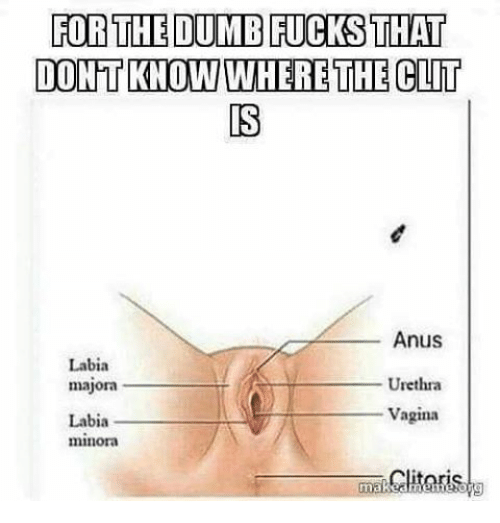 My clit and how it works